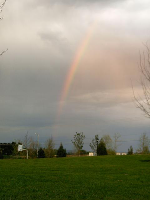 Springtime rainbow in Oregon